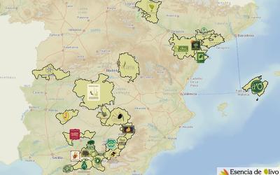 La Geografía del Olivar Español