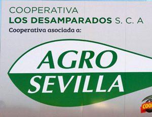 Logo Agro Sevilla al que pertenece la Cooperativa Los Desamparados